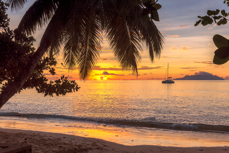 Tropical island at sunset.