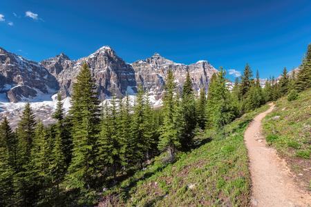 Fragment of Moraine Lake trail in Canadian Rockies, Banff National Park, Alberta, Canada.