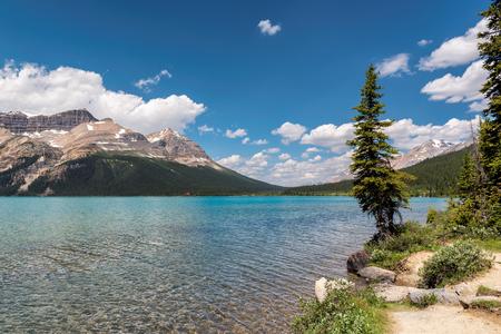 Bow Lake morning reflection Banff National Park, Canada.