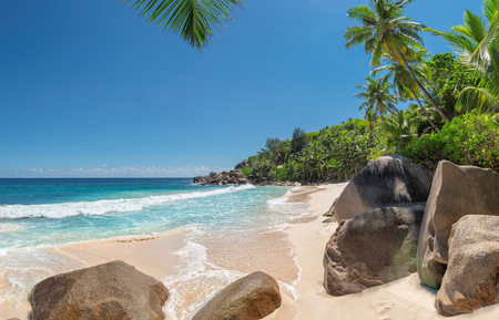 View of a nice tropical beach with palms and beautiful stone in Seychelles.