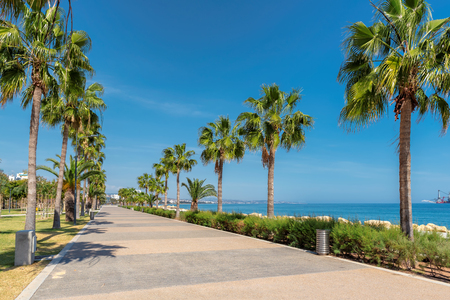 Limassol promenade alley with palm trees, Cyprus.