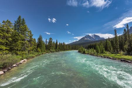 River in summer, Jasper National Park, Alberta, Canada.