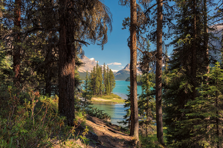 Beautiful view from trail to Spirit Island in Maligne Lake, Jasper National Park, Alberta, Canada.
