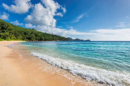 Caribbean beach and tropical island. Summer vacation and tropical beach concept. 免版税图像 - 151126615