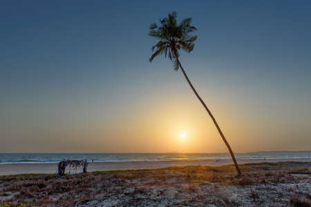 Sunset at coconut palms on tropical beach on paradise Goa, India 免版税图像 - 152428689