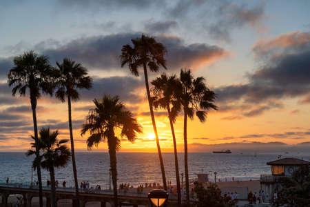 California beach. Palm trees on Manhattan Beach at sunset in California, Los Angeles, USA. Stockfoto