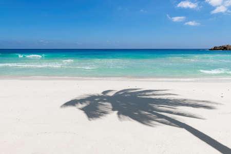 Coco palm shadow on white sand tropical beach.