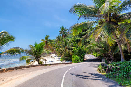 Road trip. Beach palms road in paradise island, Mahe, Seychelles