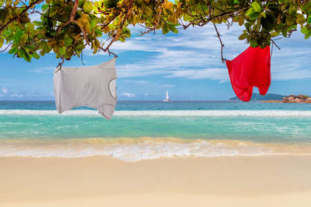 Vacation tropical beach. Summer vacation and tropical beach concept. 免版税图像 - 151055750