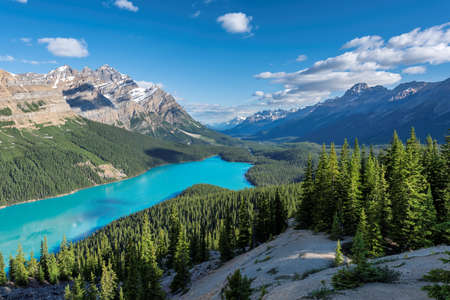 Beautiful turquoise waters of the Peyto lake in Banff National Park of Canada.
