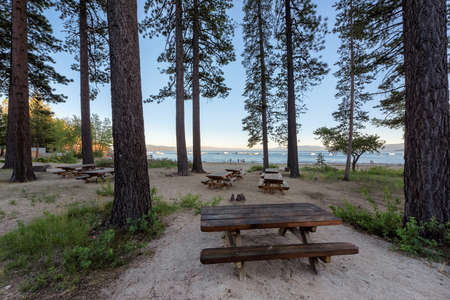 Picnic aria under pine trees near lake Tahoe, California