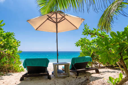 Chairs and umbrella in paradise beach. Coco palm, white sand and turquoise sea.