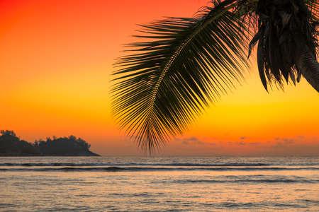 Seychelles beach. Beautiful view of exotic beach in Seychelles, La Digue island.