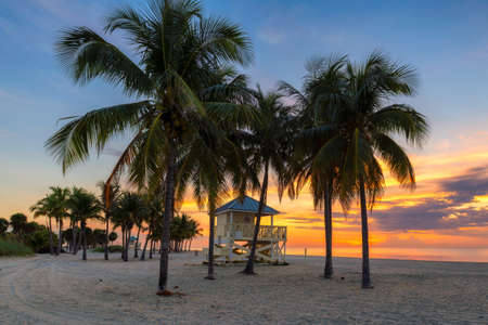 South beach with palm trees at spectacular sunrise in Miami Beach, Florida.