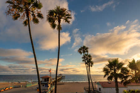 Sunset view of palm trees and pier on Manhattan Beach in evening in Los Angeles, California, USA. 免版税图像