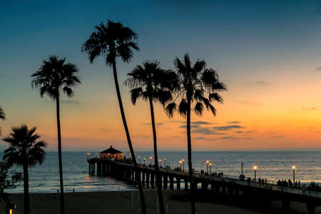 Sunset view of palm trees and pier on Manhattan Beach in evening in Los Angeles, California, USA. Vintage processed.