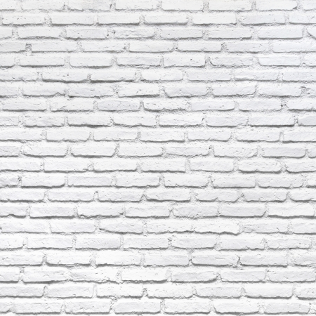 mortero: Pared de ladrillo blanco para un fondo