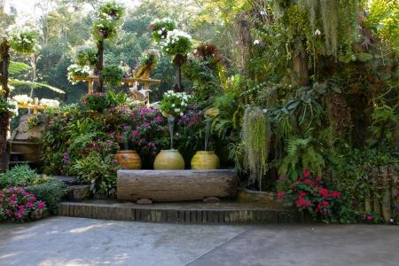 beautiful backyard garden park scene