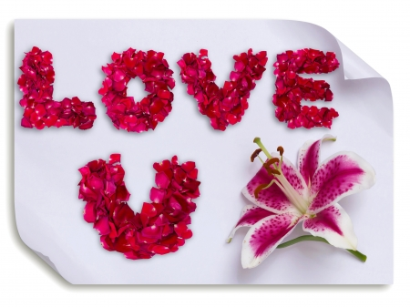 Love you word made from red rose petals and lily flower on paper Stock Photo - 18320311