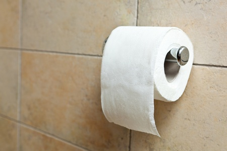 toilet roll: This is a closeup of a toilet paper