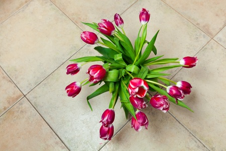 arrangment: This is a closeup of a bunch of red tulips Stock Photo