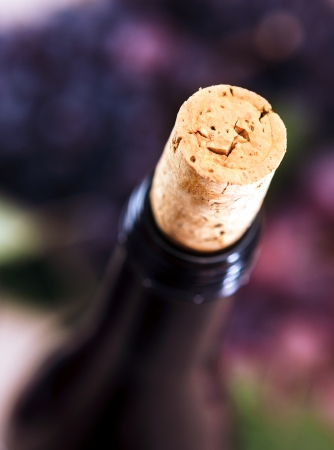Closeup of wine bottle and cork - studio shot photo