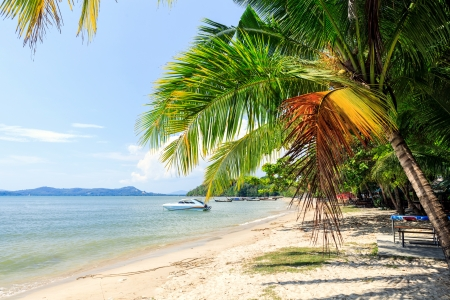 Perfect beach in Thailand with white sand, palm trees and blue sky Stock Photo - 20351529