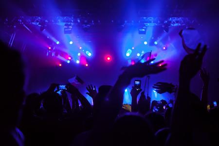 Jubelnde Menge Spaß bei einem Konzert. Standard-Bild - 36675645