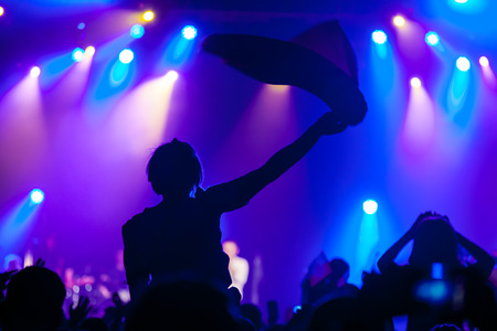 cheering fans: Cheering crowd having fun at a concert. Stock Photo