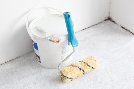 Paint bucket with roller brush on white background.