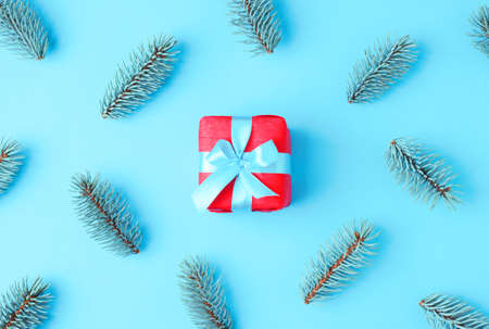 Red gift with blue ribbon around fir tree branches on blue background. Christmas or holiday concept