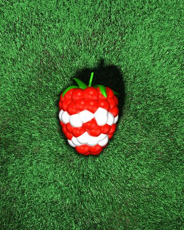 Shiny red white berry. On the grass, turf. Shiny raspberry, blackberry. Red, white sport teams football, soccer, hockey, golf. Top view. top down. Lighting shine. 3d illustration Foto de archivo