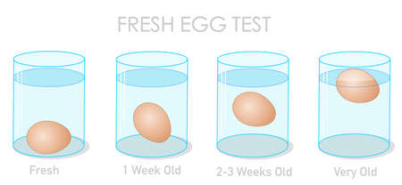 Fresh egg test. Finding daily fresh eggs, weekly old and stale eggs with the flotation and sinking experiment. Freshness experiment in clear glass container, cup. Illustration Vector Ilustrace