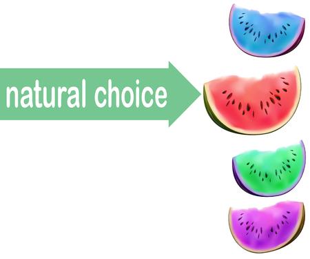 modified: Watermelon slice, no GMO choice concept. Modified colors of fruit flesh. Illustration