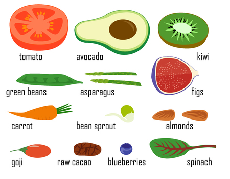Superfood fruits and vegetables isolated vector illustration set. Figs spinach goji raw cacao bean sprout vegetarian vegan food