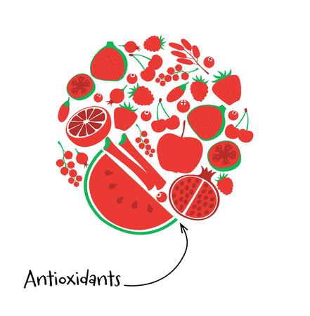rhubarb: Antioxidant red fruit and berry icon set. Round vector illustration vegetarian fresh healthy dessert. Vegan food diet pomegranate guava fig rhubarb barberry rosehip goji cranberry