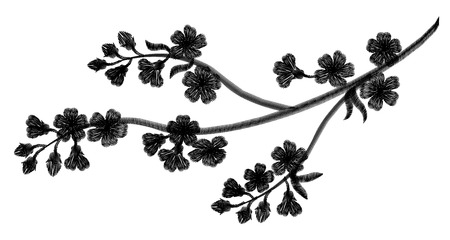 fleur cerisier: Embroidery blossoming cherry branches on a black background. black petals fall off. fashion clothing decoration. traditional pattern. vector illustration Illustration