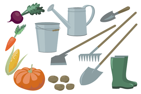 Farm Garden inventory set items elements and vegetables harvest yield. Beets carrots corn pumpkin potatoes bucket watering can rake shovel chopper boots vector illustration art