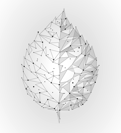 Connected dots point line triangle leaf. Eco nature concept on white background lights geometric poligonal low poly icon template vector illustration Illustration