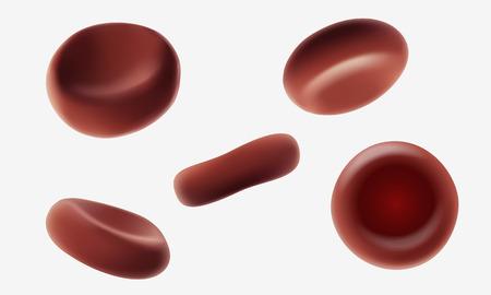 Eritrocitos rojos de las células sanguíneas humanas que fluyen la macro cercana encima del ejemplo médico realista 3d del vector. Varios ángulos aislados en el arte de fondo blanco Foto de archivo - 80999742