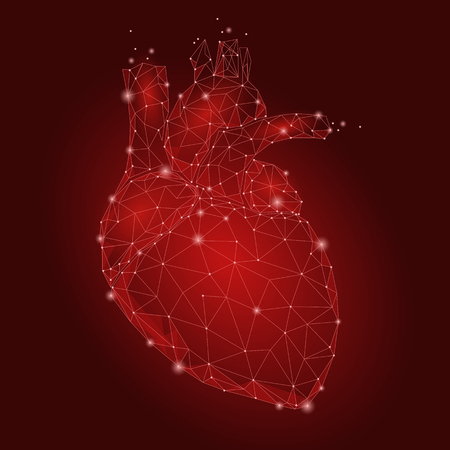 Human Heart Internal Organ Triangle Low Poly. Connected dots red color technology 3d model medicine healthy body part vector illustration