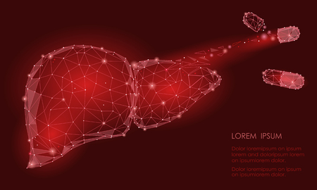 Treatment regeneration decay Human Liver Internal Organ Triangle Low Poly. Connected dots red color technology 3d model medicine capsule tablet drug vector illustration art