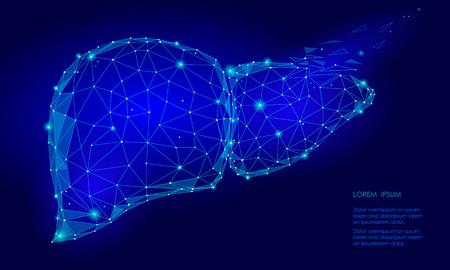 治療再生崩壊人間肝内部器官の三角形低ポリ。ドット ブルー色技術 3 d モデル医学健康な体の部分ベクトル図を接続
