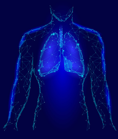 Human Lungs Internal Organ. Respiratory system Inside Body Silhouette. Low Poly 3d Connected Dots Triangle Polygonal Design. Blue Color Background Vector Illustration Vector Illustration