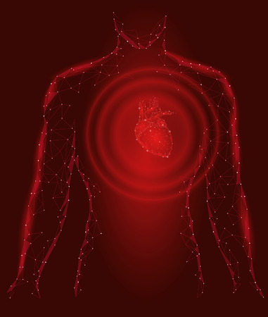 Man silhouette healthy heart beats 3d medicine model low poly. Triangle connected dots glow point red background. Wave impulse from internal body vector illustration