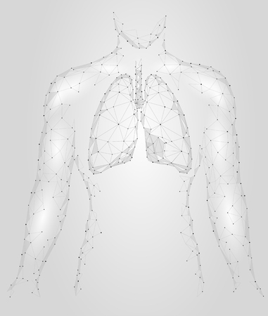 gray: Human Lungs Pulmonary infection Internal Organ. Respiratory system Inside Body Silhouette. Low Poly 3d Connected Dots Triangle Polygonal Design. Gray White Color Background Vector Illustration