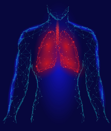 Human Lungs Pulmonary infection Internal Organ. Respiratory system Inside Body Silhouette. Low Poly 3d Connected Dots Triangle Polygonal Design. Red Blue Color Background Vector Illustration Stock Photo