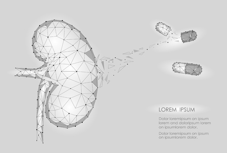 renal stone: Kidney internal organ men 3d low poly geometric model. Urology system medicine disease treatment drug capsule. Future science technology polygonal geometric wire mesh vector illustration