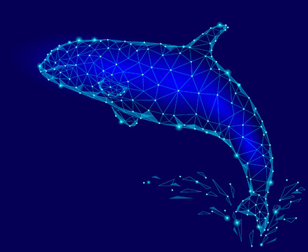 Killer whale 3d polygonal triangle model. Underwater sea wild danger monster. Glowing blue connected dots wire mesh logo water splash vector illustration art