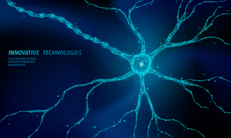 Human neuron low poly anatomy concept. Artificial neural network technology science medicine cloud computing. AI 3D abstract biology system. Polygonal blue glowing vector illustration